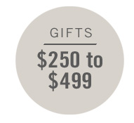 Gifts $250 - $499