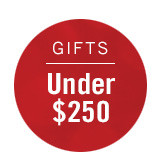 Gifts Under $250 >